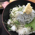 生しらす丼を淡路島の松帆の郷で食べてきた
