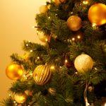クリスマスツリーはいつから飾る?アメリカと日本の違い