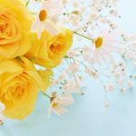 父の日に花を贈るのはいつ?父の日の由来とおすすめのギフト